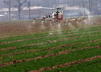 HENAN, CHINA - MARCH 07: (CHINA MAINLAND OUT)  Unmanned aircraft sprayed wheat with pesticides on Thursday March 07, 2013 in Huaxian, Henan, China. Agriculture sicence and technology offers more benefit to farmers now.  (Photo by TPG/Getty Images)